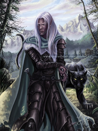 drizzt_guardian_of_icewind_dale