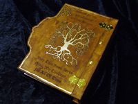 Book_Of_Shadows-Back