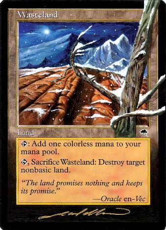 wastelands4seasons_nightime