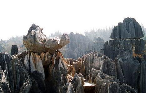 foresta di pietra 2