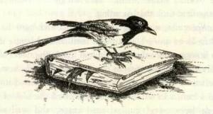 Le parodie di Evengelion ci hanno insegnato come interagire coi pennuti.