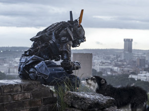 humandroidchappierecensioneneilblomkamp