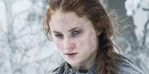 sansa kinslayer