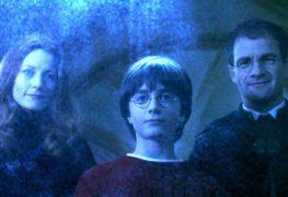 harry-potter-famiglia