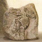 cabral-pietre